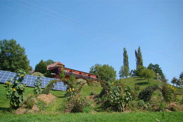 Hügelbeete und Permakultur am Weingut Tauss