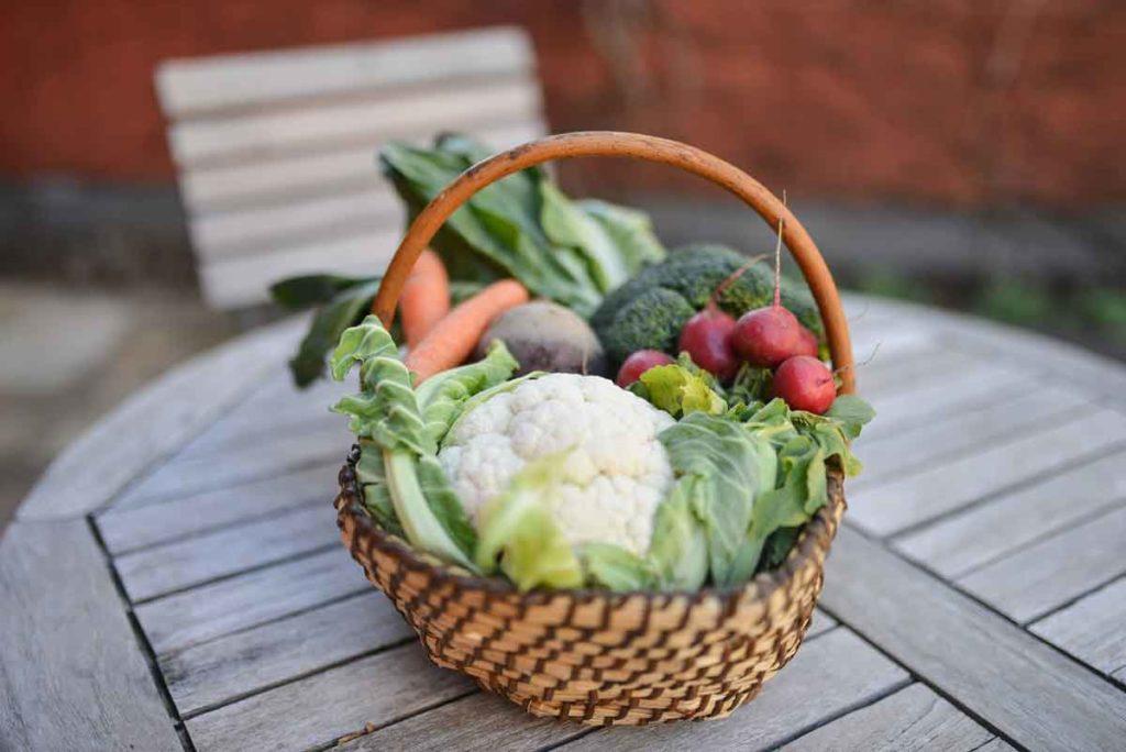 Die gesunde Jause: Frisches Obst und Gemüse, Weingut Tauss